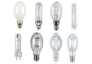 HID, LED ou Fluorescente? Escolhendo a luz perfeita para seu cultivo indoor